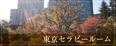 東京・赤坂セラピールーム